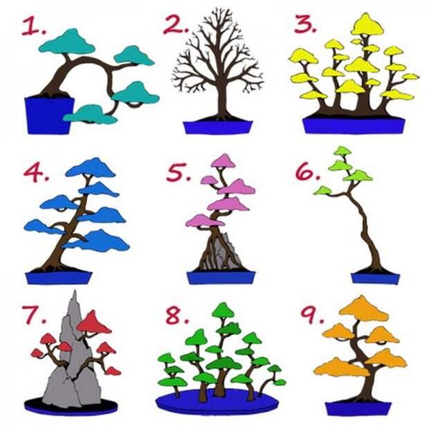 британский-тест-к-какой-работе-вы-предрасположены-выберите-дерево-и-узнайте-1