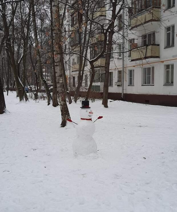 Фото дня: весёлый снеговик у дома