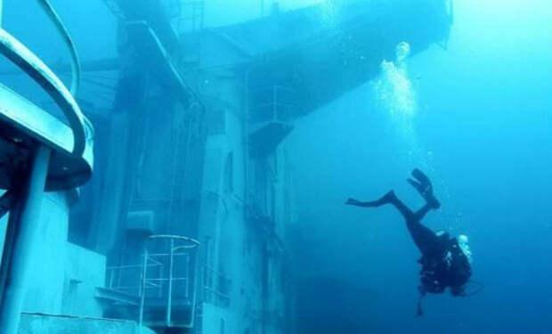 Старый авианосец отправили на дно и превратили в коралловый риф: видео