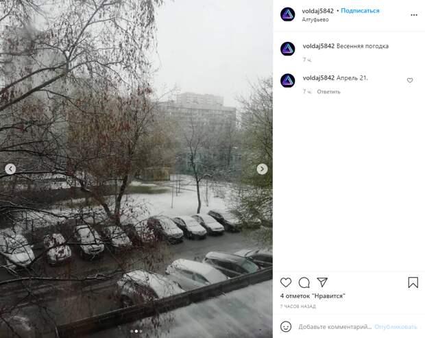 Фото дня: в апреле в Алтуфьеве выпал снег
