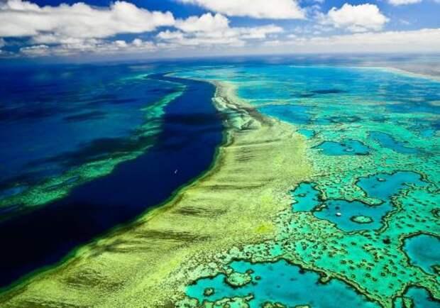 В Австралии будут стрелять солью в небо для спасения Большого Барьерного рифа