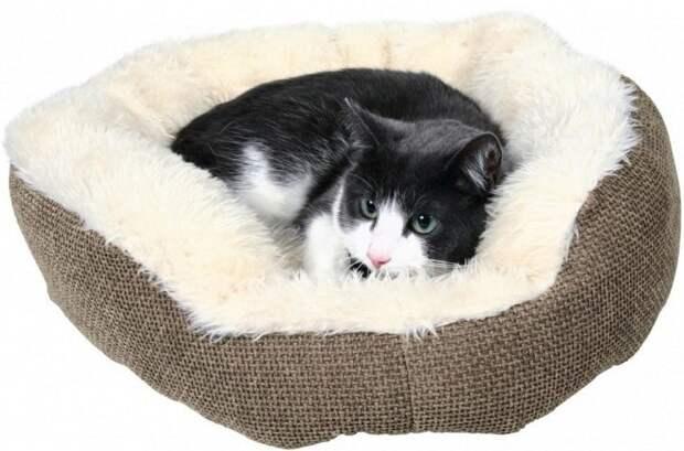 """Картинки по запросу """"спальные домики для котов"""""""