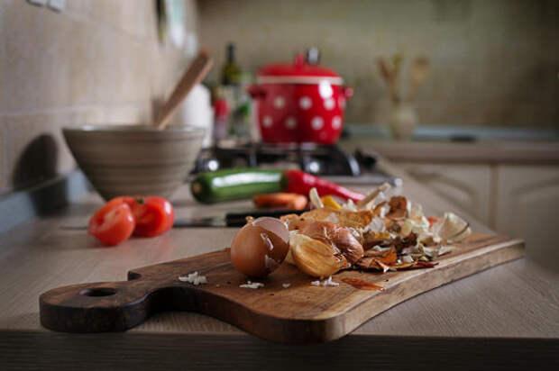Пищевые отходы могут стать удобрением