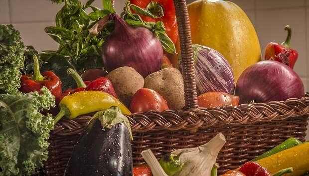 Более 1 тонны овощей доставят пенсионерам Московского региона в рамках акции