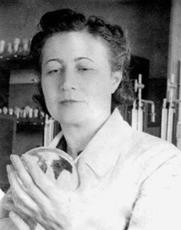 Зинаида Ермольева - выдающийся советский ученый-микробиолог и эпидемиолог, создатель антибиотиков, - в 1942 году впервые в России изобрела пенициллин.