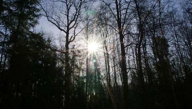 До плюс 8 градусов ожидается в Подольске в воскресенье