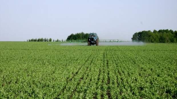 Практические рекомендации по посеву озимых зерновых культур под урожай 2022 года