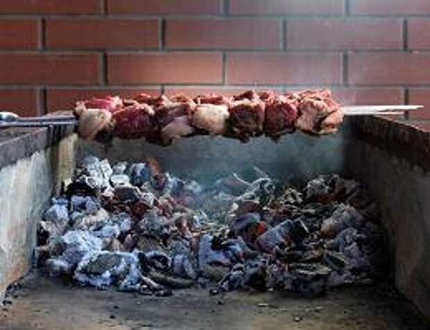 Какое мясо лучше для шашлыка? Баранина, свинина говядина или курица