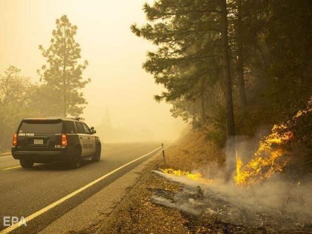 В США спасатели взяли под контроль лесные пожары в трех западных штатах