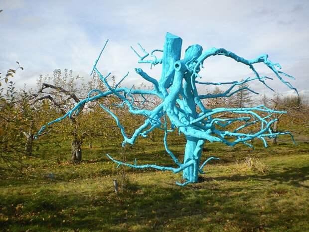 """Лучший ленд-арт конкурса """"Land Art Mont-Saint-Hilaire 2012"""" (26 фото) """" Фото и видео приколы, веселые картинки, смотреть и скача"""