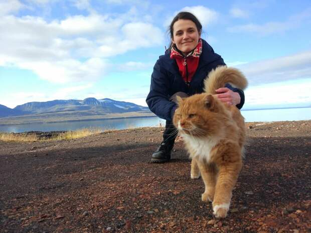 Кеша — единственный кот, который живет на норвежском архипелаге Шпицберген