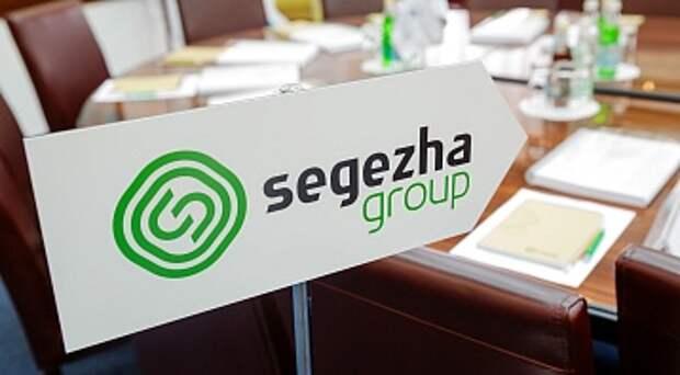 Segezha Group в 2021-2023 годах намерена платить в качестве дивидендов по 3-5,5 млрд рублей