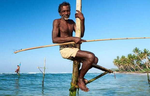 A close-up of a stilt fishermen in action, Sri Lanka, Asia. [url=/file_search.php?action=file&lightboxID=9858744][img=http://bem.republika.pl/istock/rajasthan_380.jpg][/img][/url] [url=/file_search.php?action=file&lightboxID=9870440][img=http://bem.republika.pl/istock/pushkar_fair_380.jpg][/img][/url] [url=/file_search.php?action=file&lightboxID=9112292][img=http://bem.republika.pl/istock/incredible_india_380.jpg][/img][/url] [url=/file_search.php?action=file&lightboxID=9112300][img=http://bem.republika.pl/istock/people_india_380.jpg][/img][/url] [url=/file_search.php?action=file&lightboxID=9112325][img=http://bem.republika.pl/istock/kerala_380.jpg][/img][/url] [url=/file_search.php?action=file&lightboxID=5699034][img=http://bem.republika.pl/istock/nepal_380.jpg][/img][/url] [url=/file_search.php?action=file&lightboxID=9090200][img=http://bem.republika.pl/istock/people_nepal_380.jpg][/img][/url] [url=/file_search.php?action=file&lightboxID=7554738][img=http://bem.republika.pl/istock/trekking_380.jpg][/img][/url]