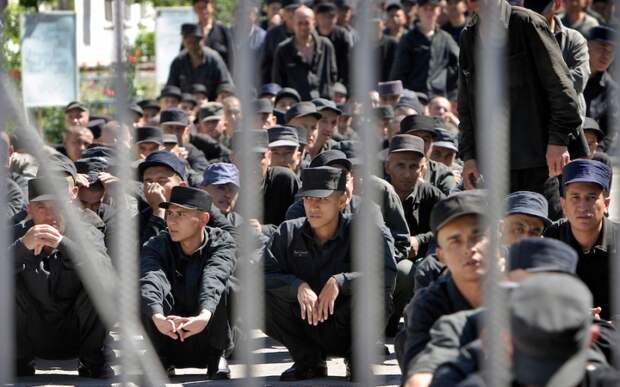 Тренировка из тюрьмы: как накачаться на 4 квадратных метрах