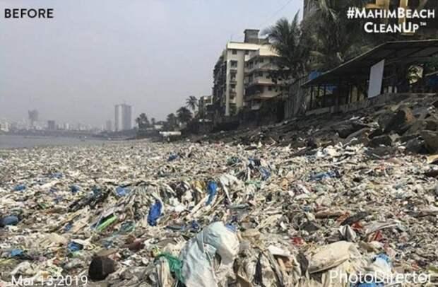 Добровольцы показали, как теперь выглядит пляж Махим Бич (2 фото)