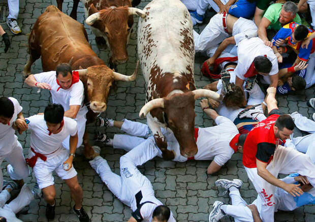 Зачем люди в Испании бегают от быков: история праздника Сан-Фермин в Памплоне