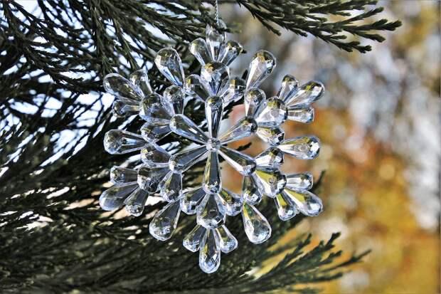 Первые новогодние елки установили в Северном