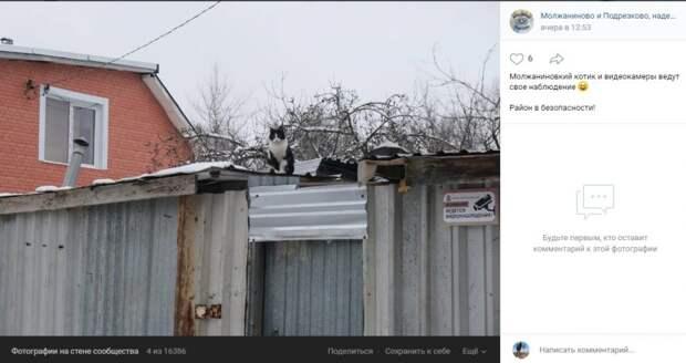 Фото дня: совершенная система наблюдения появилась в Молжаниновском