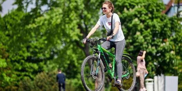 Депутат МГД Самышина рассказала о правилах безопасного летнего отдыха