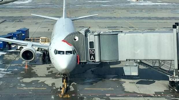 Авиакомпания ростовского аэропорта Платов «Азимут» ушла вминус на146млн загод