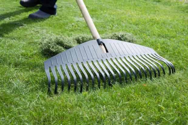 В компостницу можно добавить скошенную газонную траву
