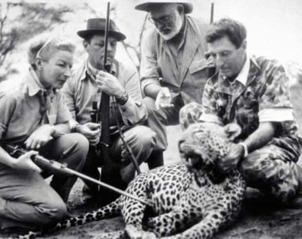 Эрнест Хемингуэй со своим трофеем — африканским леопардом.
