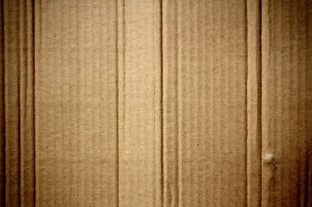 У подъезда дома на Дубнинской устранено складирование картона