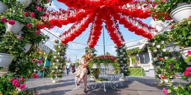 Собянин: Фестиваль «Цветочный джем» в Москве начнется 1 сентября Фото: Ю. Иванко mos.ru