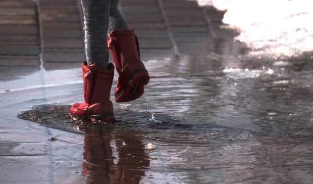 В Ростовской области нашли двух пропавших девочек-подростков