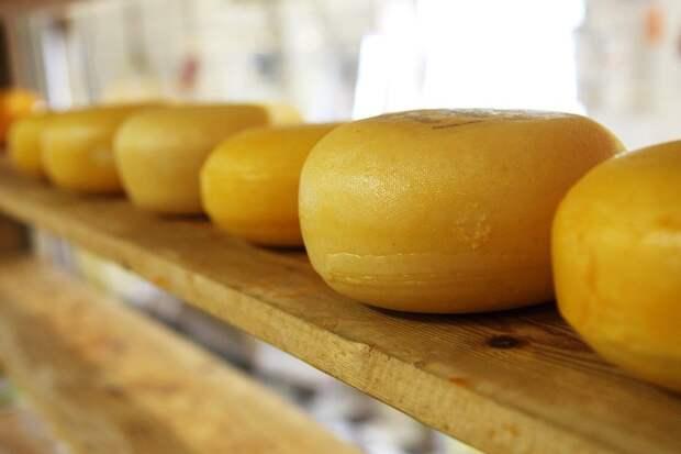 Сыр, Колеса, Колеса Сыра, Молочная, Молочные Продукты
