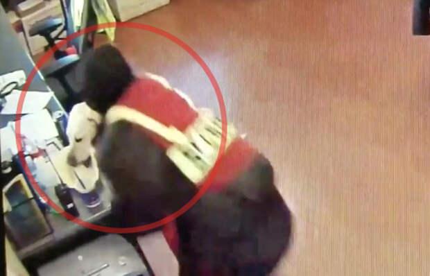 Хитрый пёс обворовал американских полицейских
