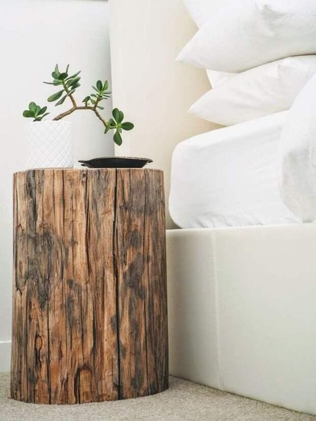 Новый взгляд на пни и спилы дерева в интерьере