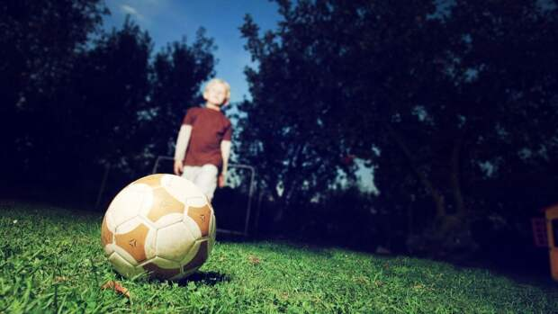 Более 70 нарушений выявили в спортивных школах Камчатки
