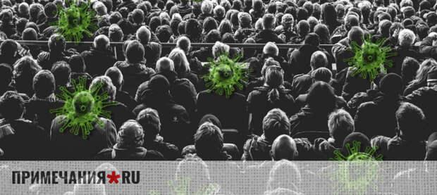 Бизнес спросил у Развожаева: почему власть фестивалит, а другим - запрет