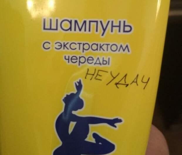 Веселые картинки с надписями для хорошего настроения (12 фото)