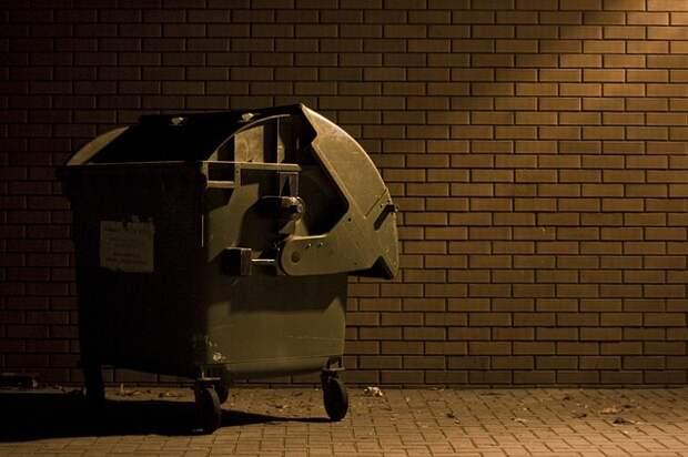 Мусорный контейнер «загостился» во дворе на Люблинской улице