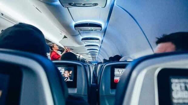 В Анапе пассажирка покусала стюардессу: дебоширку сняли с рейса