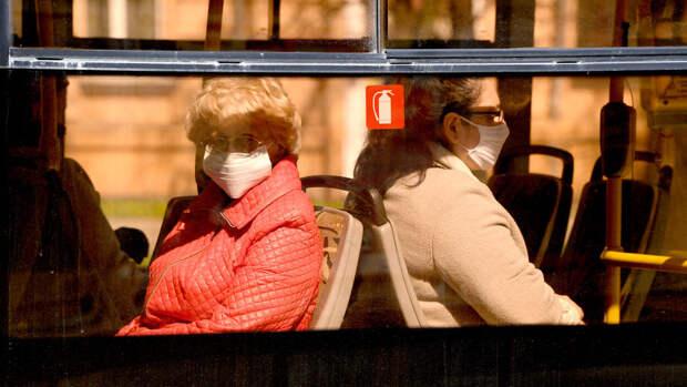 В Подмосковье могут запретить пользоваться общественным транспортом без QR-кода