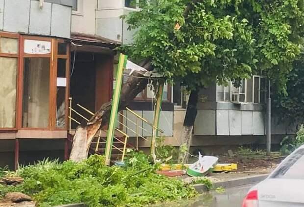 Половина города Саки оказалась обесточена непогодой