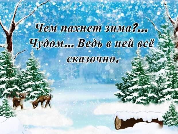 Красивые и прикольные цитаты о зиме