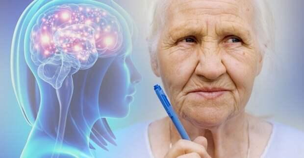 В Марьиной роще запустили курс для поддержания умственных способностей пенсионеров в тонусе