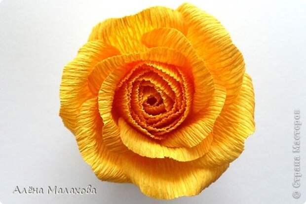 Мастер-класс Роза из гофрированной бумаги Бумага гофрированная Клей фото 25