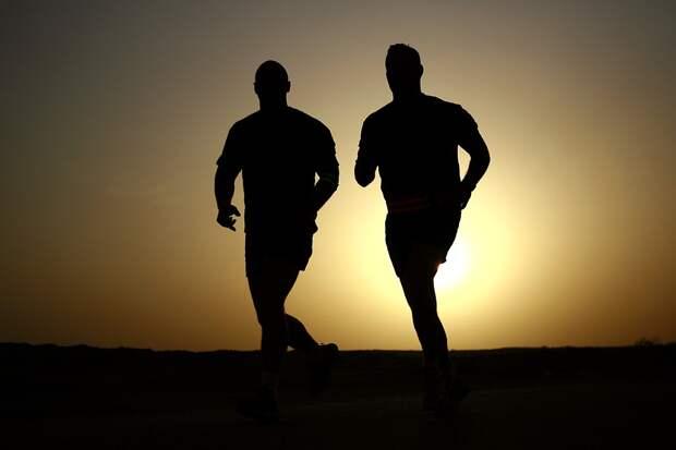 «Дорога победителей»: гонку с препятствиями проведут в СВАО