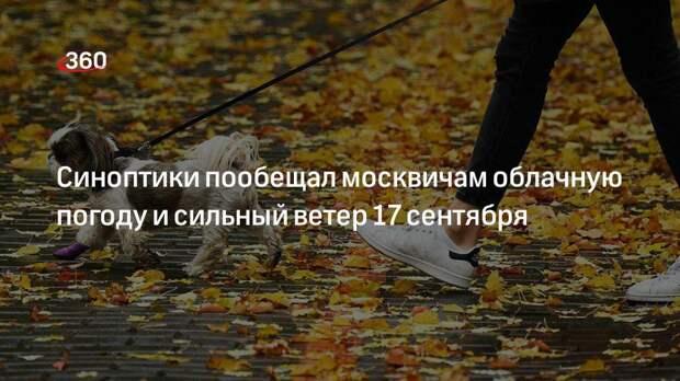 Синоптики пообещал москвичам облачную погоду и сильный ветер 17 сентября