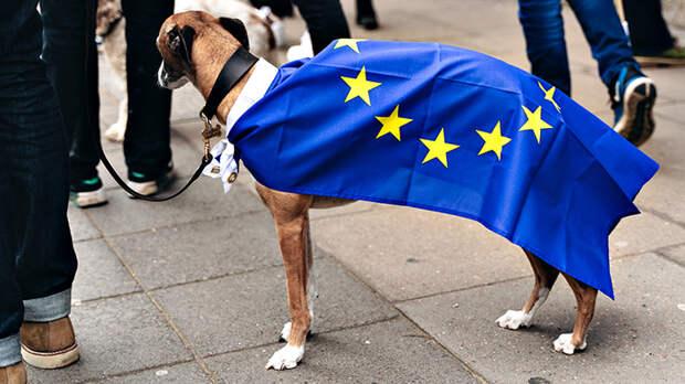 Что нам делать с Европарламентом? Россия должна реагировать жёстко