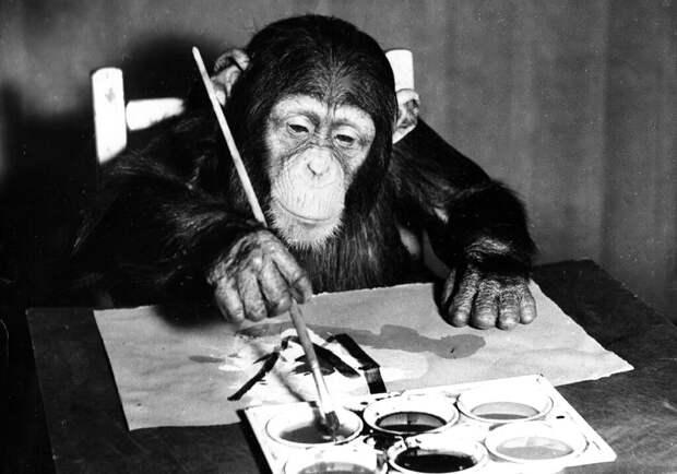 Дарвин был не прав: возникновение новых видов не требует долгой эволюции