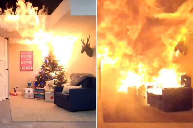 Елочка, гори! Новогодняя красавица может превратить комнату вгруду пепла за23 секунды