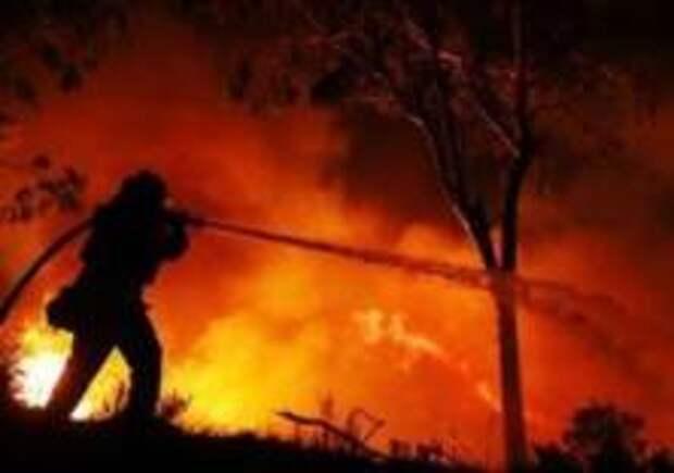 Неподалеку от Берлина бушует лесной пожар