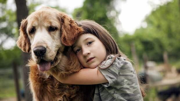 Про чужую собаку и чужую маму