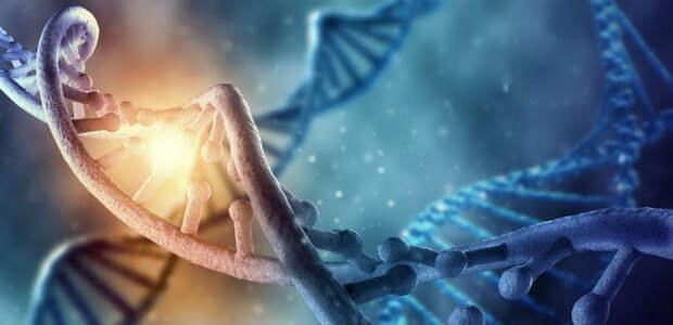 Тайны истории, человечество, ДНК, генетика, science, history
